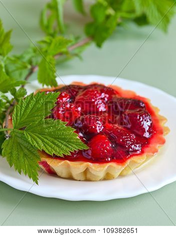 Raspberry Pie And Green Twig