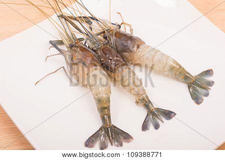 Raw Tiger Fresh Shrimps On White Dish