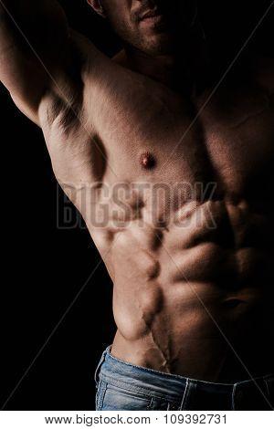 Torso of attractive muscular man