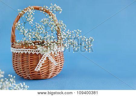 Bouquet Of White Gypsophila, Baby's Breath Flowers.
