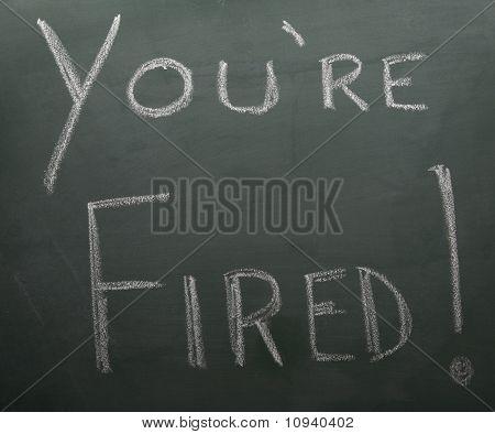 You're Fired On Blackboard