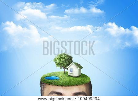 The Human Head With Grass And House. The Concept Of Ecology