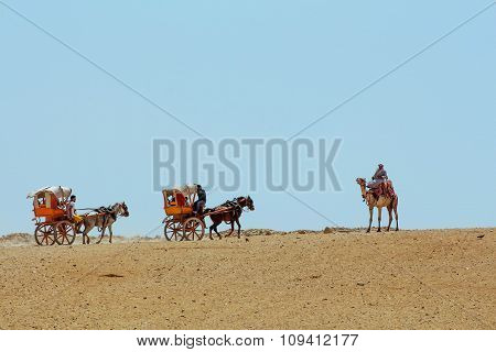 Camels and horse and cart in the distance