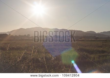 Sunrise And Field With Lens Flare