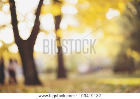 Autumn Or Fall Blurred Abstract Nature Background