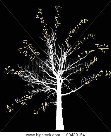 tree with mathematical equations isolated on black background illustration