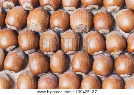Hazelnuts Background