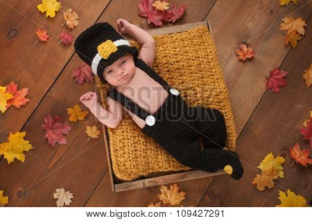 Newborn Baby Boy Wearing A Pilgrim's Costume