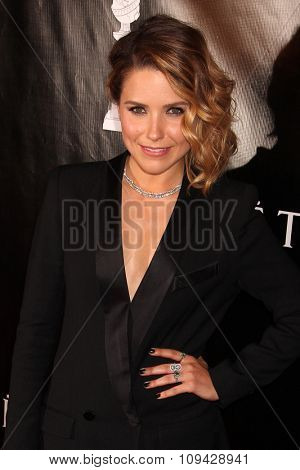 LOS ANGELES - AUG 13:  Sophia Bush at the HFPA Hosts Annual Grants Banquet - Arrivals at the Beverly Wilshire Hotel on August 13, 2015 in Beverly Hills, CA