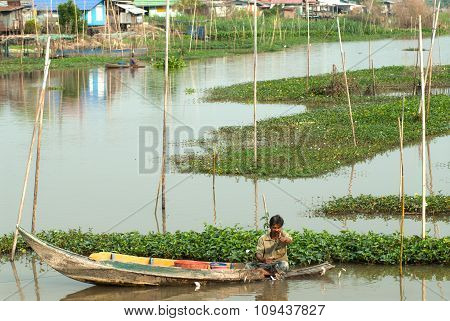 Thai traditional fisherman pull up the fishnet.