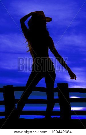 Silhouette Cowgirl Hand On Hait Other Down
