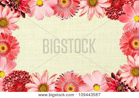 Vintage Frame With Red Flowers Collage Mix Gerbera, Chrysanthemum, Dahlia, Primula, Decorative Sunfl