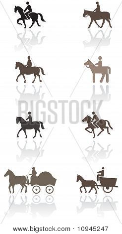 Horse or pony symbol vector illustration set.