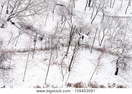Above View Of Footpath In Snow Urban Park