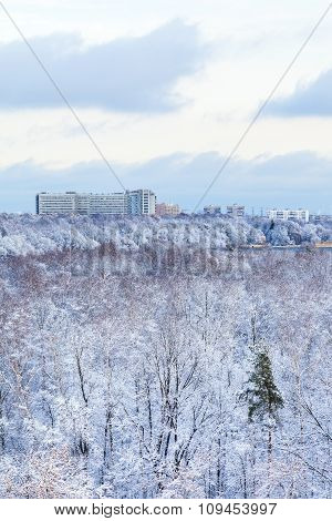 City Houses And Frozen Woods In Winter