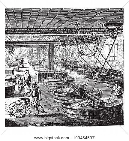 Workshop tanning with sumac, vintage engraved illustration. Industrial encyclopedia E.-O. Lami - 1875.