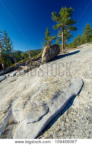 Landscape of trees and rock in Yosemite National Park, California, United States.