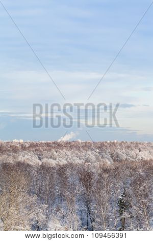 Blue Clouds In Blue Sky Over Snow Forest