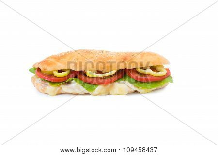 Delicious fast food sandwich with cheese, paprika, lettuce and tomato