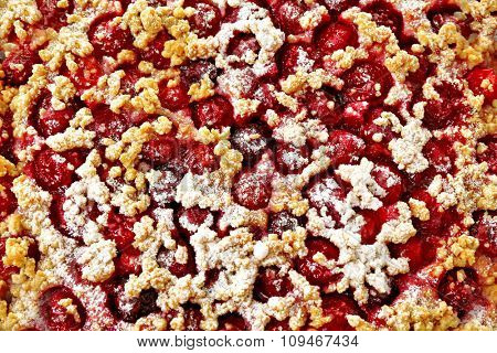 Tasty homemade pie with cherries close up