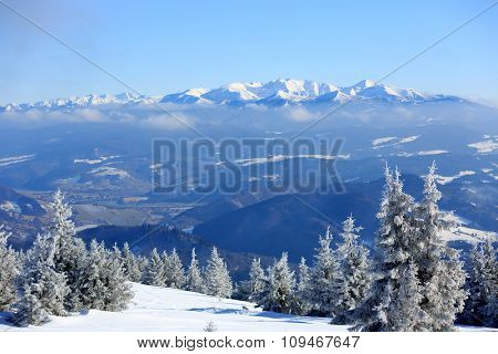 nice winter scene with mountains on background