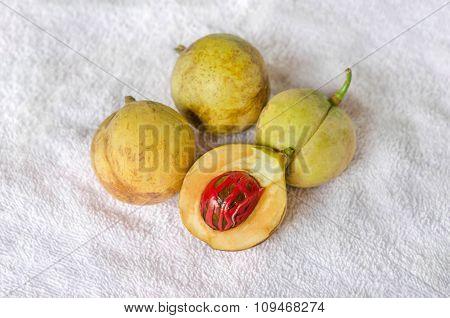 Nutmeg Fruits