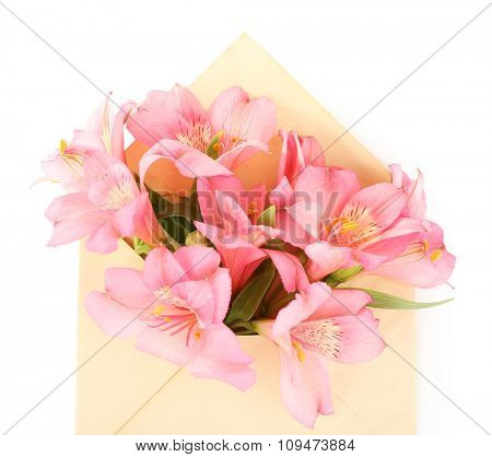 Pink alstroemeria in envelope, isolated on white