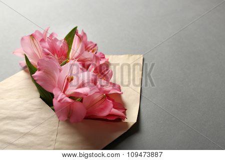 Pink alstroemeria in envelope on grey background