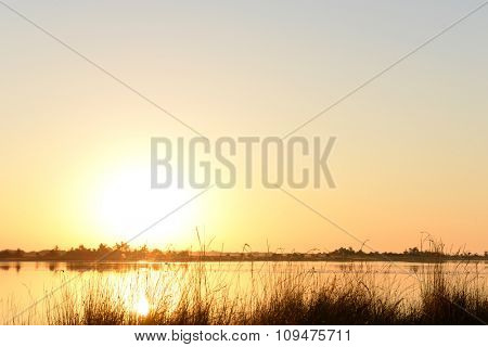 Golden sunrise over calm water