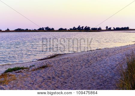 Evening summer shore in the country