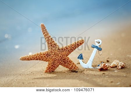 Beautiful starfish and anchor on unfocused background