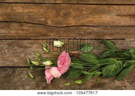 Beautiful eustoma on wooden background
