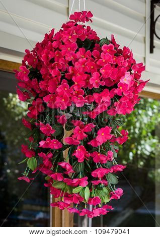 Hanging Pot With Bush Of Pink Cosmos Flowers