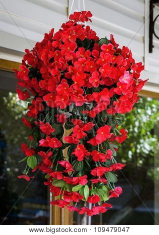 Hanging Pot With Bush Of Red Cosmos Flowers