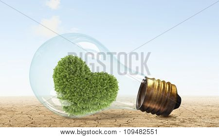 Glass lightbulb with love shaped green tree growing inside