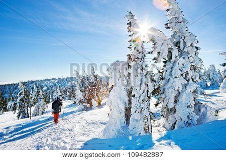 Krkonose (giant) Mountains, Czech Republic