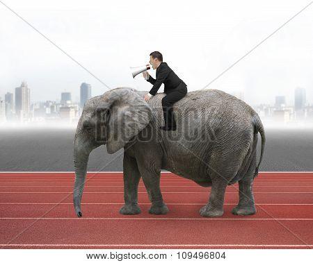 Businessman With Using Speaker Riding On Walking Elephant