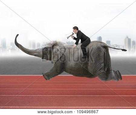 Businessman With Using Speaker Riding On Elephant