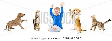 Group of a cheerful pets and kid