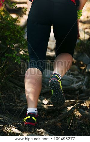 closeup legs of woman running over rocks and tree roots up