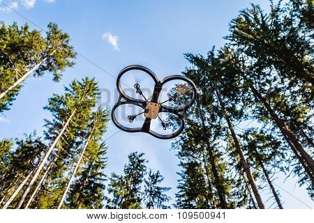 Scout Drone In The Forest