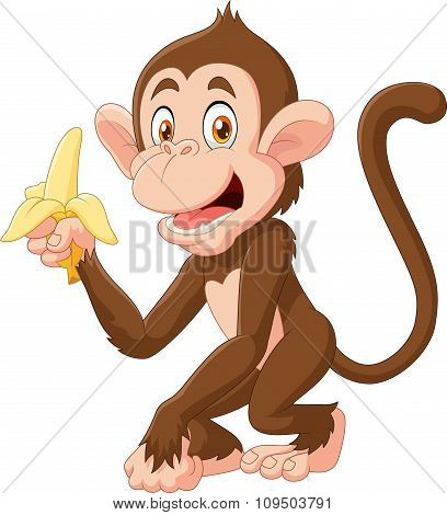 Cartoon funny monkey holding banana isolated on white background