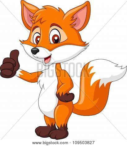 Cartoon funny fox giving thumb up isolated on white background
