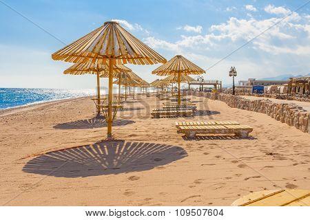Coast Of Red Sea