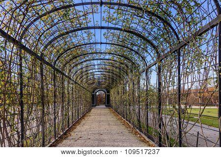 Tunel garden