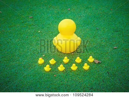 Leadership Concept , Big Yellow Duck Leading Group .