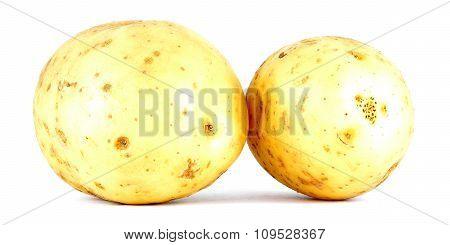 Potato, two potatoes isolated on white background
