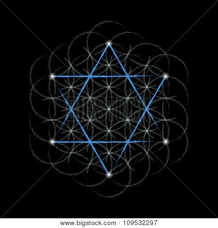 Flower Of Life With David Star
