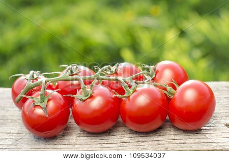 Couple of tomatoes on a wooden table. Natural background. Green. Fresh and raw tomatoes