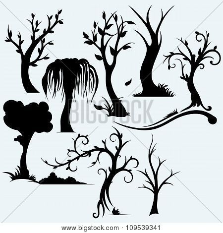 Collection of bare trees